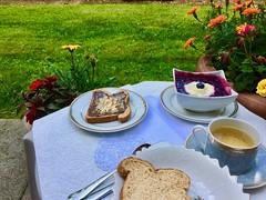 Healthy meal for breakfast (i_kaya@rogers.com) Tags: breakfast garden photography photograph meal flower bread blueberry berries tahina rosemary tea cocoa sesame cinnamon honey healthy