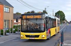 558458 82 (brossel 8260) Tags: belgique bus prives namur luxembourg tec