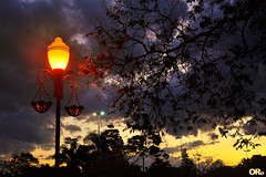 Street lights and sunset (Otacílio Rodrigues) Tags: árvores trees postes lampposts nuvens clouds céu pôr do sol sunset luzes lights natureza nature urban resende brasil oro