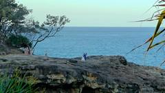 // North Stradbroke Island Life (CornerView) Tags: nature beach sun travel ocean surf kangaroo backpack australia island animal sunset palm coast queensland boat trip tropical life vibe mood weekend casual clean outside