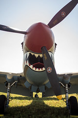 The Flying Tigress (NiTsClicks) Tags: p40 curtiss airshow flying tigress plane fighter sharkface shark deadly smiling teeth jaws pentax k3