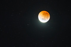 Lunar Eclipse and Red Moon (Merrillie) Tags: night redmoon eclipse astrophotography stars moon newsouthwales lunar moonphases nightsky lunareclipse fullmoon sky nighttime centralcoast australia astro