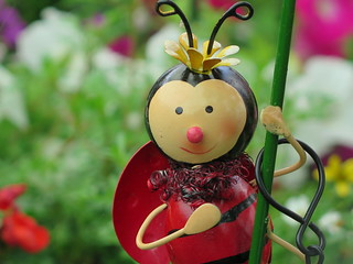 Lulu the Ladybird ... ���