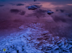 Salinas de Torrevieja (Fran Ramos.) Tags: alicante clikcartagena esferas fotosnocturnas frascoramos lightpainting naturalezanightlightplayers nocturnas sal salinas torrevieja