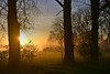 The hope and the glory (Tobi_2008) Tags: sonnenaufgang sunrise sonne sun bäume trees wald forest sachsen saxony deutschland germany allemagne germania platinumheartaward