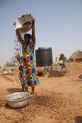 USAID in Ghana: Shea Butter Processing (USAID Africa) Tags: northernregion ghana sankpala gupanarigu africa unitedstatesagencyforinternationaldevelopment usaid internationaldevelopment shea economicgrowth economicgrowthandtrade women woman processing