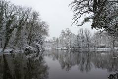 Le lac des Minimes (StephanExposE) Tags: paris iledefrance france stephanexpose eau water vincennes lac lake bois forest forêt neige snow white blanc canon 600d 1635mm 1635mmf28liiusm