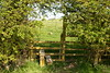 Rutland_007 (Adam.Eales91) Tags: rutland rutlandwater hambleton spring egleton