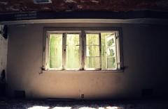 A Breath Of Fresh Air (Abandoned Illinois) Tags: abandoned illinois house old rurex exploration rural urban basement window moss light life beauty glow aura