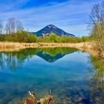 Side pocket of river Inn near Oberaudorf, Bavaria, Germany thumbnail