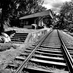 Ella (Paula Richards) Tags: srilanka railway blackandwhite monochrome