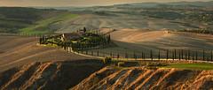 Terra di Siena (rinogas) Tags: italy tuscany toscana asciano siena rinogas