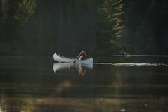 Tony V. (Jackx001) Tags: 2018 algonquinpark bushcraft camping canada canadaday fishing jacknobre july nature ontario tonyviclicky wetlake canoe lake landscape
