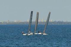 800_4610 (Lox Pix) Tags: queensland qld australia woodypoint hyc humpybongyachtclub winterbash foiling foilingcatamaran catamaran trimaran loxpix bramblebay boats