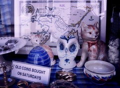 How much are these Kitties in the Window? (pianocats16) Tags: antique shop window display vintage cat kitty kitten figure english map china imagination