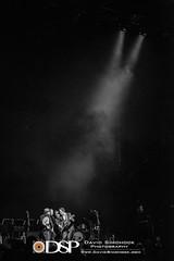 Steep Canyon Rangers - Asheville, NC (David Simchock Photography) Tags: americana asheville bw davidsimchockphotography nikon northcarolina scr steepcanyonrangers uscellularcenter uscc avlmusic blackandwhite bluegrass concert event image livemusic music performance photo photography usa