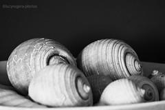 (lucyrogersphotography) Tags: villa shells decor decoartion seashells lucyrpegrshotos blackandwhite bw monochrome lucyrogersphotos
