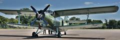 "Antonov An-2 ""Colt"" (Bri_J) Tags: riat2018 royalinternationalairtattoo raffairford fairford gloucestershire uk riat airshow aircraft hdr nikon d7200 antonov an2 colt antonovan2 biplane estonianairforce"