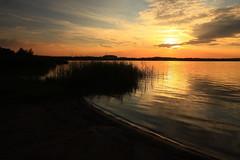 IMG_4698 Kozłowa Góra dam reservoir (MariuszWicik) Tags: sunset grass water sky tree river lake canoneos5dmarkii polonia pologne polish eu europe sun lens home house mariuszwicik piekary śląskie
