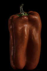 Vertical Red Pepper In The Light (Bill Gracey 22 Million Views) Tags: pepper redpepper vegetable vertical offcameraflash blackbackground homestudio tabletopphotography macrolens softbox yongnuo yongnuorf603n shapes shadows color colorful stem green