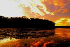 Burning Sky. (Photolove2017) Tags: sky sunrise dawn ottawagatineau quebec canada colors clouds reflection tiaphoto photolove2018 d3100 nikondx cold