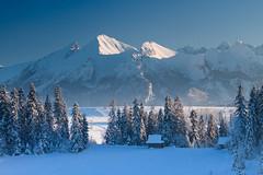 20171230-Canon EOS 750D-4346 (Bartek Rozanski) Tags: bukowinatatrzanska poland malopolskie podhale winter polska tatras bielianske tatry hut mountains snow