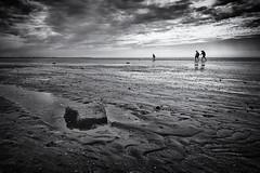 Wading through the Wadden Sea (mitcho pitch) Tags: wading through wadden sea walk sony alpha 68 dt sal 1650 1650mm f28 mud flat lower saxony niedersachsen norddeich