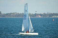 800_4665 (Lox Pix) Tags: queensland qld australia woodypoint hyc humpybongyachtclub winterbash foiling foilingcatamaran catamaran trimaran loxpix bramblebay boats
