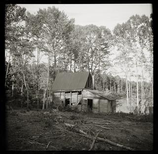 Cabin near Cluster Springs
