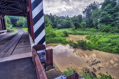 Kramer and Mud Run, 2017.07.17 (Aaron Glenn Campbell) Tags: columbiacounty greenwoodtownship mudrun queenposttruss coveredbridge kramerbridgeno113 3xp hdr outdoors lush foliage leaves stream creek weather rain overcast cloudy macphun skylum aurorahdr2017 nikcollection viveza on1effects sony a6000 ilce6000 mirrorless rokinon 12mmf2ncscs wideangle primelens manualfocus emount ±2ev