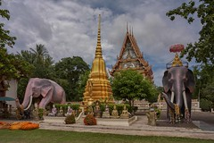 Wat Muang Sa Noi-Nakorn Ratchisima (Thaiexpat) Tags: 2018 watmuangsanoi buddha wat temple sky thailand elephant