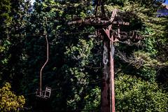 Days past (Melissa Maples) Tags: batumi batum ბათუმი adjara აჭარა georgia gürcistan sakartvelo საქართველო asia 土耳其 nikon d3300 ニコン 尼康 nikkor afs 18200mm f3556g 18200mmf3556g vr spring მწვანეკეპი mtsvanecape ბოტანიკურიბაღი botanicalgarden trees rusted broken old chairlift cablecar