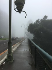 Neblina... (Bruna cs) Tags: gramado rio grande do sul brasil brunacs neblina inverno ponte luz frio serra gaucha mist cold saw bridge street brume froid rue