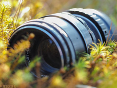 Retro gear (PershinS) Tags: macromondays photographygear moss sunrise helios karelia olympus