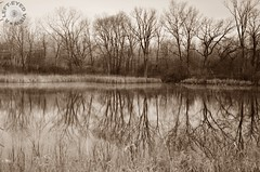 Be the Best Reflection of Yourself (Steven Sabourin) Tags: ibsp reflection sepia