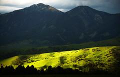 Golden Hour Greens - Bozeman, MT (j-rye) Tags: sonyalpha sonya6000 sony a6000 ilce6000 mirrorless bozeman montana clouds