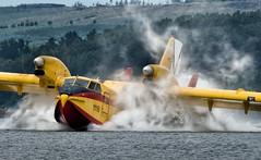 Canadair CL215 (joseramongonzalez544(Checha)) Tags: airplane nikon nikkor agua embalse canadair bombardier cl215 grupo 43 aerolane show helice botijo ejercito del aire boat corsarios grupo43 plane hydravion