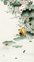 Frog and tadpoles (1900 - 1930) by Ohara Koson (1877-1945). Original from the Rijks Museum. Digitally enhanced by rawpixel. (Free Public Domain Illustrations by rawpixel) Tags: amphibians animal antique art asian drawing flower frog illustration japan japanese koson name ohara oharakoson old paint tadpoles vintage