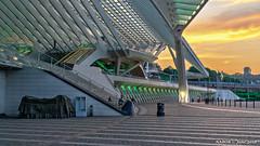 Liège. Belgium: Liège-Guillemins railway station (nabobswims) Tags: be belgianrailways belgium hdr highdynamicrange ilce6000 lightroom liège liègeguillemins mirrorless nabob nabobswims photomatix sel18105g sncb santiagocalatrava sonya6000 station sunset wallonie