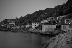 Homes Along the Battery - St. John's, Newfoundland (Toronto, Ontario, Canada) Tags: battery st johns newfoundland signall hill northhead trail harbour black white nikon d850 zeiss f2 35mm