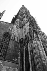 A close look at the intricacies of the Ulm Minster.