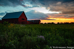 IMG_1881-1 (Al Wehrmann) Tags: monticello illinois unitedstates us barn red prairieplants