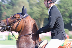 IMG_1785_rt (minions) Tags: dinard 2018 derby jumping cheval cavalier épreuve international