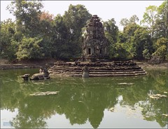 Angkor, Temple Neak Pean 20180203_115746 DSCN2674 (CanadaGood) Tags: asia seasia asean cambodia siemreap angkor neakpean buddhist khmer temple tree archaeology pond pool canadagood 2018 thisdecade color colour