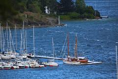 wind (Leifskandsen) Tags: bay boats gale wind water oslofjorden storm sandvika bærum camera canon living leifskandsen skandsenimages scandinavia skandsen sea summer august