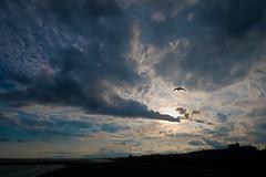 Touch The Sun (namhdyk) Tags: sky clouds hokkaido evening canon canonpowershot canonpowershotg7x