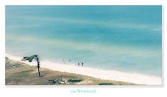 Am Weststrand (Rukiber) Tags: deutschland mecklenburgvorpommern ostsee dars wasser weststrand meer natur strand beach christian kirsch rukiber nikon d750