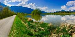 River Inn near Ebbs, Tyrol, Austria (UweBKK (α 77 on )) Tags: river inn water flow reflection green grass blue sky white clouds trees forest mountain alps ebbs tyrol tirol austria österreich europe europa iphone