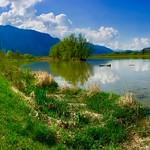 River Inn near Ebbs, Tyrol, Austria thumbnail