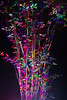 (kieronlong23) Tags: sheffield photography longexposure nighttime abstractphotography psychedelicphotography paintingwithlight brincliffe